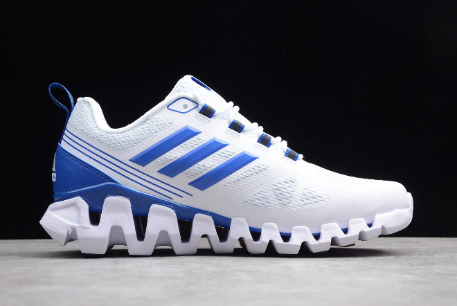 adidas Terrex White Blue For Sale 1